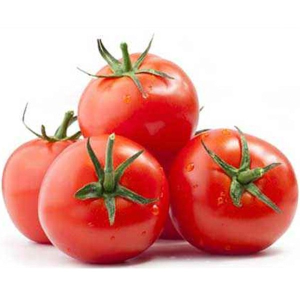 Tomate Daniela G